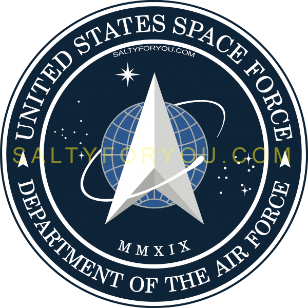 SPACE FORCE sticker star command